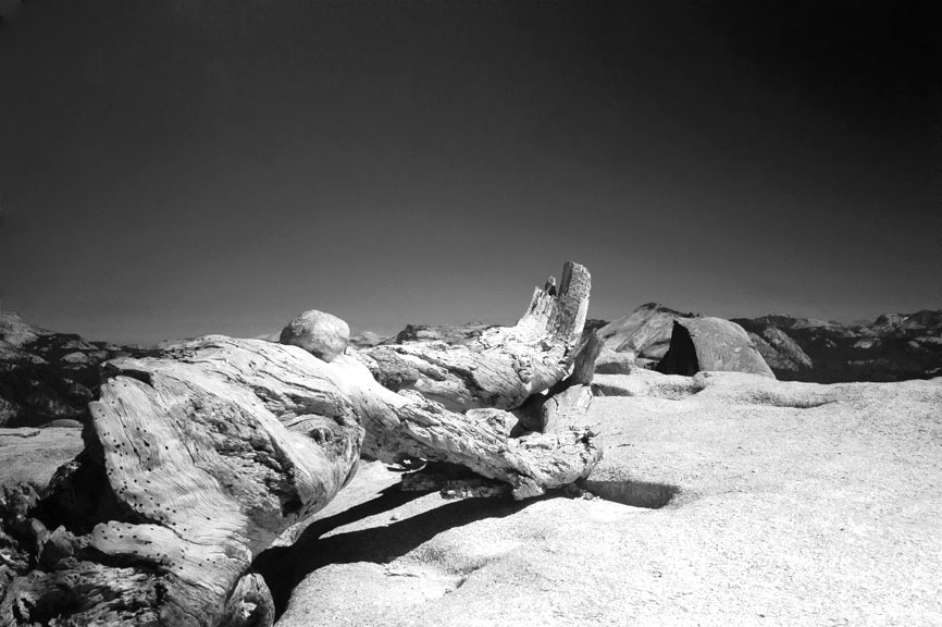 CAL_Yosemite090211-05